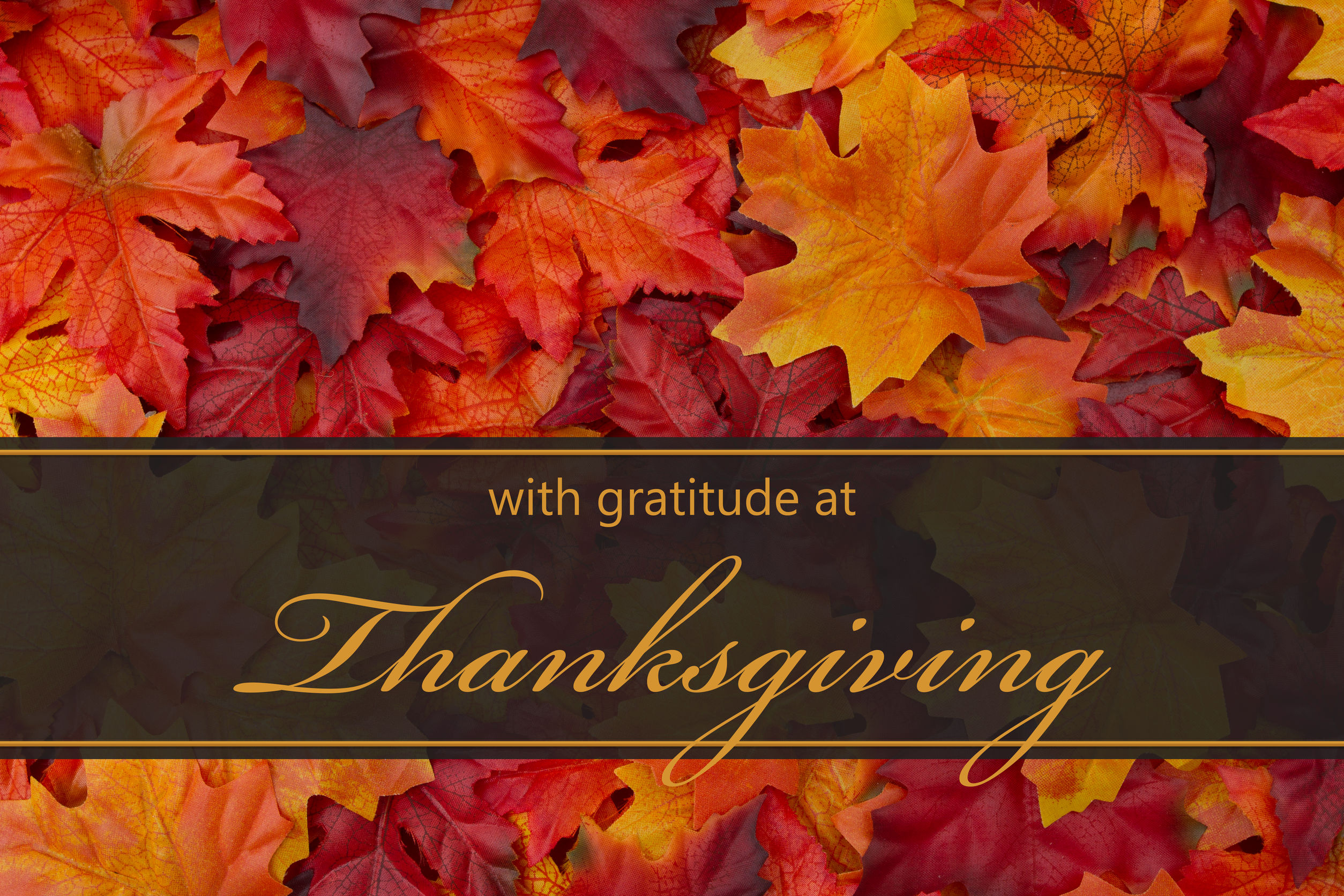 Tech Service Today offers this message of gratitude to our team members, technicians, customers, and their families. We are incredibly thankful to each of you for everything you do, and want you to know that we are here for you whenever you need us. Wishing everyone a happy and safe Thanksgiving. TST provides on-site IT technicians  to business locations across North America.